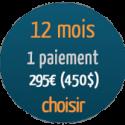 12mois-1paiement-295euros