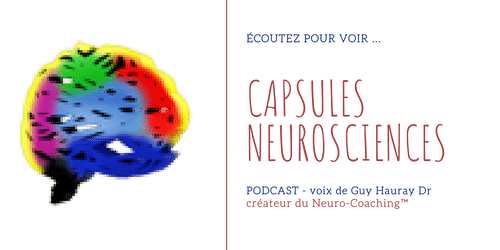 Capsules NeuroSciences_annonce web_transparent